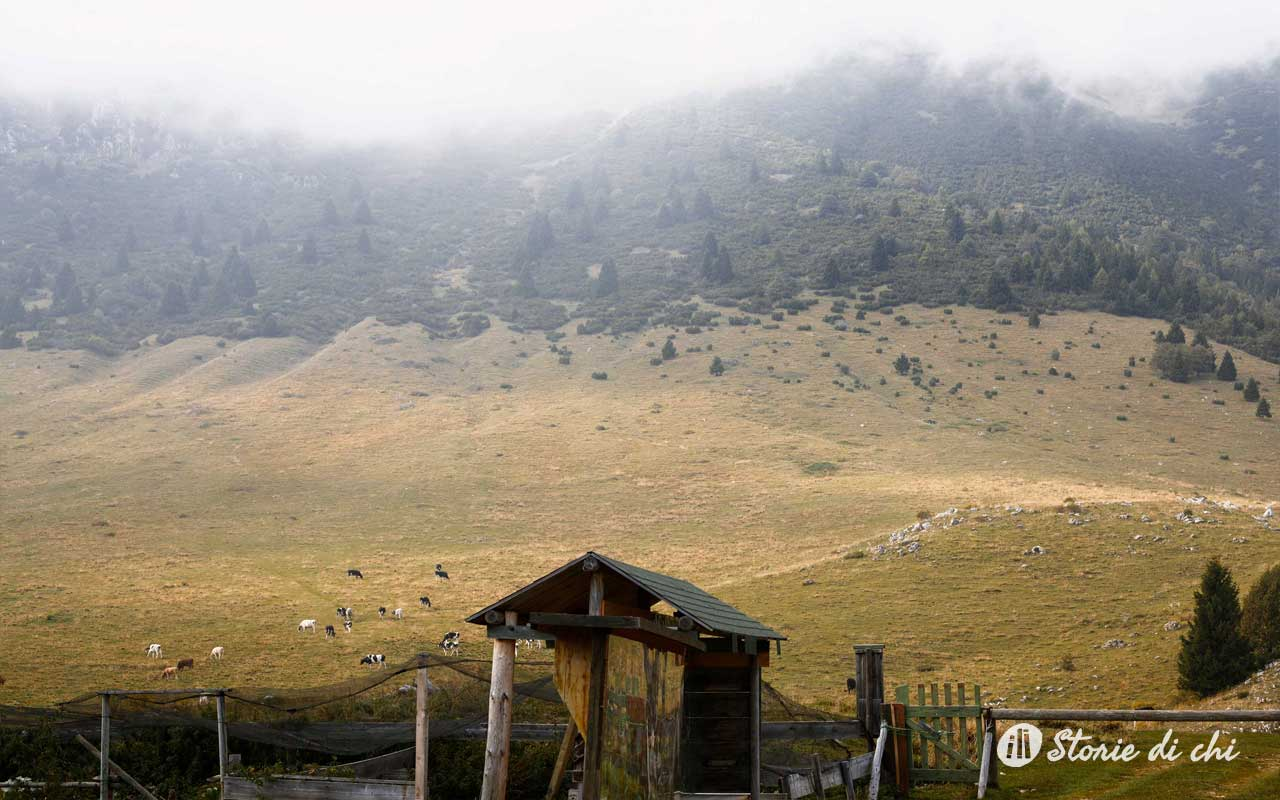 Malga Natura Monte Baldo